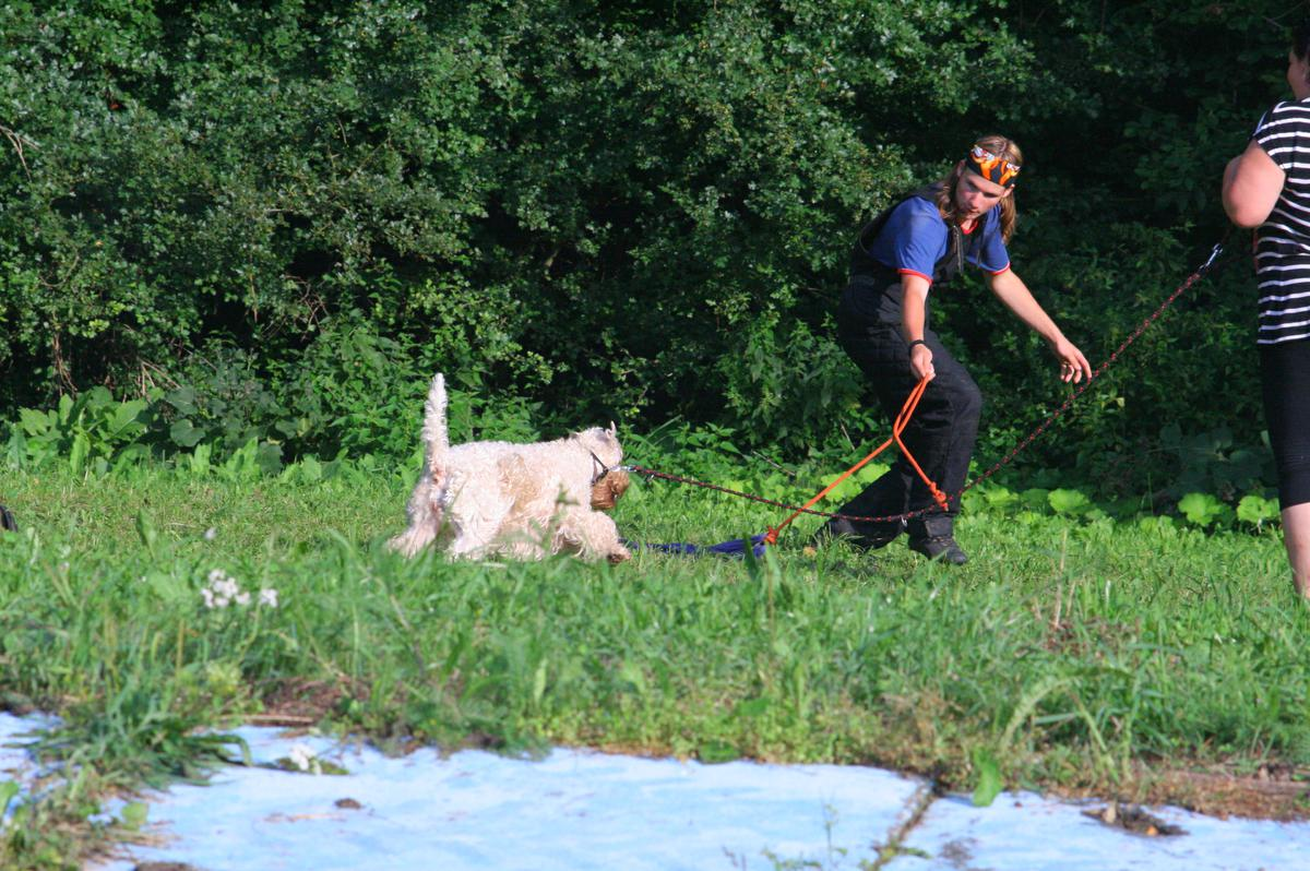 Summer_Obedience_Camp_2010_761